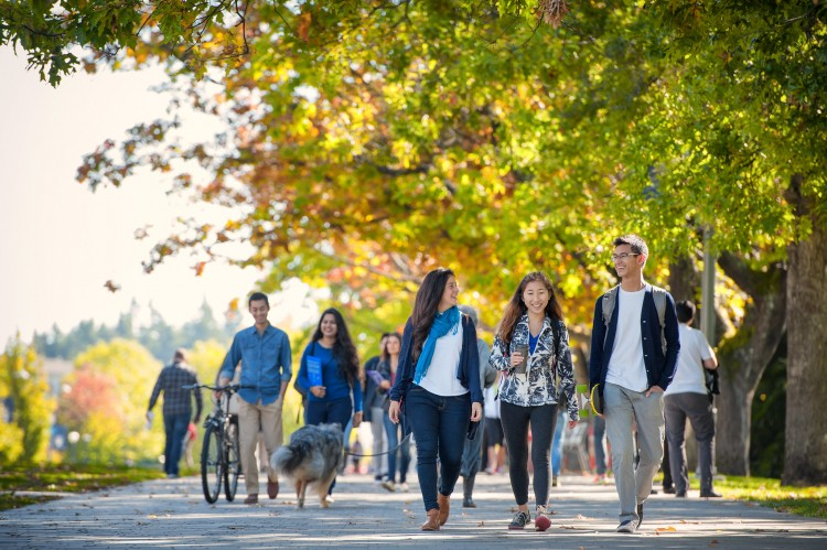 Students walk together along Main Mall on an autumn day
